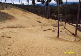 After:  Decommissioned roads and re-contoured slopes prevent future erosion