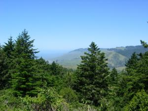 Lower Russian River Watershed from Pomo Canyon trail
