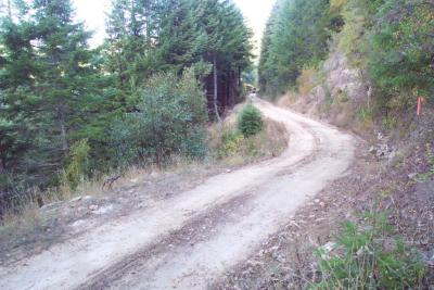 Before: Active landsliding along this poorly designed road threatens to deliver sediment to the stream below