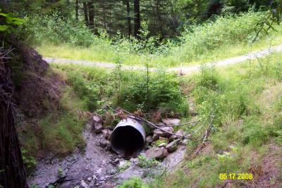 Before: Undersized culvert on the Headwaters Trail, a former logging road in the Headwaters Forest Reserve