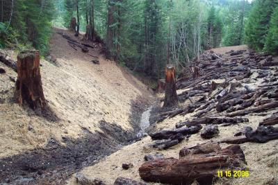 After: Sideslopes are excavated to match the natural hillslope (see stumps) and unearthed woody debris is spread over bare soil