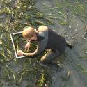 PWA staff assessing eelgrass shoot density at the HSU Aquatic Center after construction of the new dock, Eureka, CA.