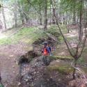 Before: Gully erosion at a stream crossing on an abandoned logging road